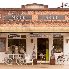 Moss Nest Berry