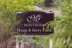 Montrose Berry Farm Wedding | Helen + Brian