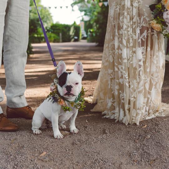 Merribee Wedding South Coast NSW | Laura & Ben